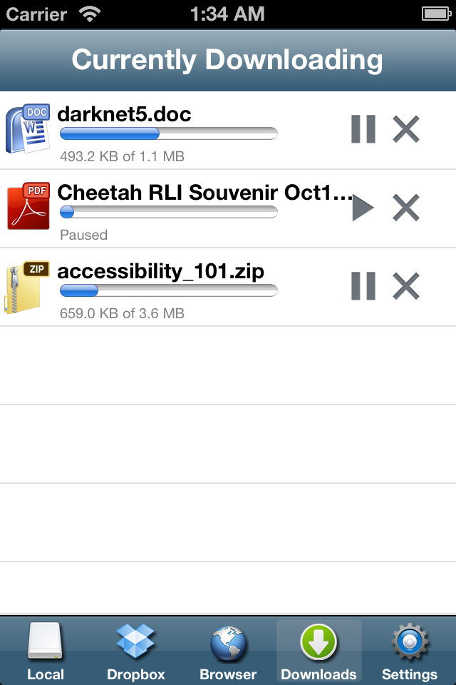 iFile Download Manager iPhone